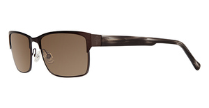 Cole Haan CH 699 Sunglasses