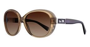 Coach HC8120 Sunglasses