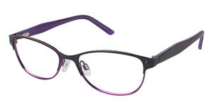 Humphrey's 592008 Black/Purple
