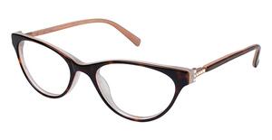 Ted Baker B719 Eyeglasses