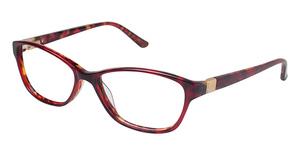 Ted Baker B722 Eyeglasses