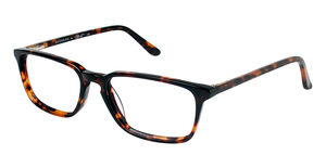 A&A Optical Second Ave Tortoise