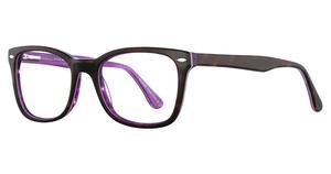 Elan 3008 Tortoise/Purple
