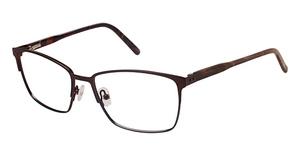 Ted Baker B337 Eyeglasses