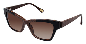 Kate Young K508 Brown