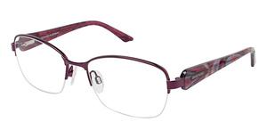 Brendel 902152 Purple
