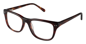 Kate Young K900 Tokyo Tortoise