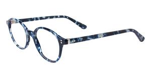 club level designs cld9905 Blue Tortoise