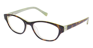 A&A Optical Donna Tortoise