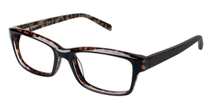 A&A Optical Longwood 12 Black