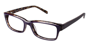 A&A Optical Longwood Purple