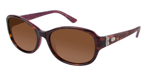 Phoebe Couture P715 Tortoise