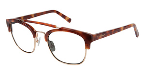 Cole Haan CH 696 HONEY TORTOISE LAMINATE