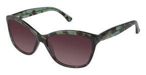 Ted Baker B658 Eyeglasses
