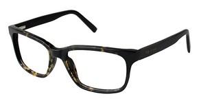 Ted Baker B880 Eyeglasses