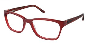 Nicole Miller Frankfort Eyeglasses