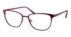 Modo 4213 Purple