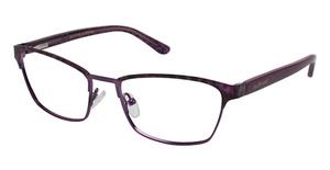 Jill Stuart JS 338 Eyeglasses