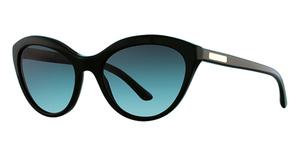 Giorgio Armani AR8033 Sunglasses