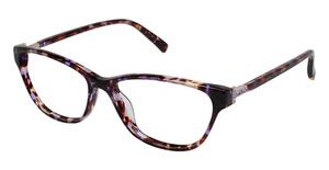 Ted Baker B737 Eyeglasses