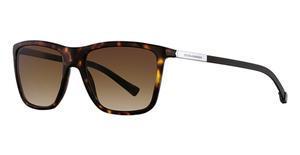 Dolce & Gabbana DG4210 Sunglasses