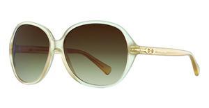 Coach HC8118 Sunglasses