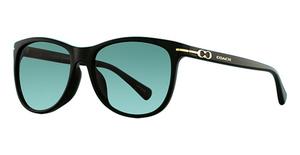Coach HC8117F Sunglasses