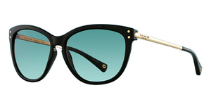 Coach HC8084 Sunglasses