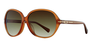 Coach HC8118F Sunglasses