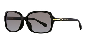 Coach HC8116F Sunglasses