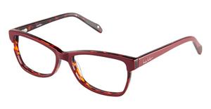Nicole Miller Ellery Eyeglasses
