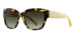 Coach HC8139 Sunglasses