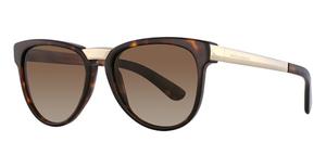Dolce & Gabbana DG4257 Sunglasses