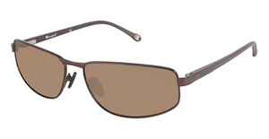 Champion 6002 Sunglasses