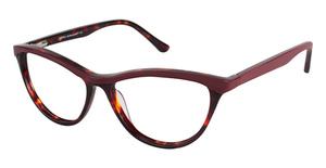 A&A Optical Loyola Red/Tort