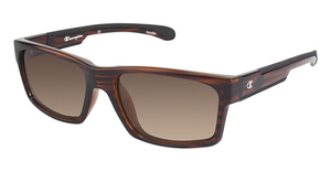 Champion 6019 Sunglasses