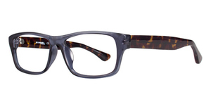Eight to Eighty Apollo Eyeglasses