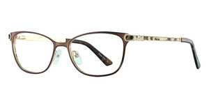Avalon Eyewear 5049 Brown