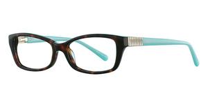 Avalon Eyewear 5047 TORTOISE/TURQUOISE