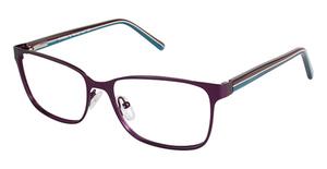 A&A Optical Eureka Purple