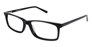 A&A Optical Sycamore Black