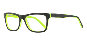 New Millennium Spider Eyeglasses