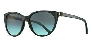 Emporio Armani EA4057 Sunglasses