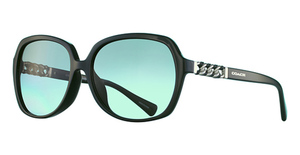 Coach HC8155QF Sunglasses