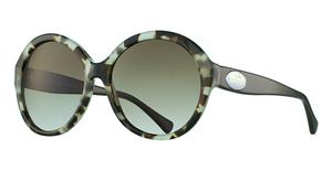 Coach HC8149 Sunglasses