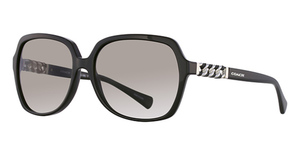 Coach HC8155Q Sunglasses