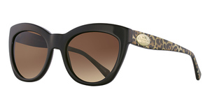 Coach HC8151 Sunglasses
