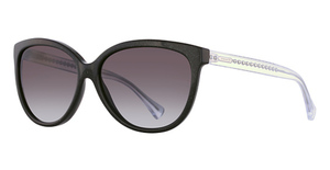 Coach HC8153 Sunglasses
