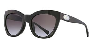 Coach HC8151F Sunglasses