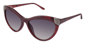 Ted Baker B677 Sunglasses